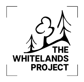 The Whitelands Project
